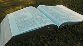 A bibles pages blow in the wind while sitting on grass thumbnail