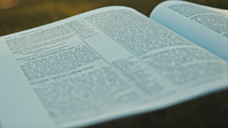 A bible is laying open on grassy terrain thumbnail
