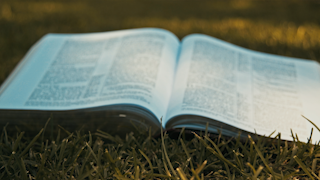 A bible is laying open in a grassy field thumbnail