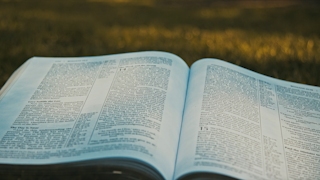 A bible is laying on the grass in a park thumbnail