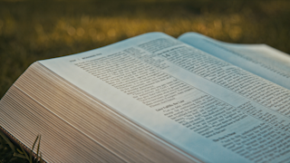 A bible is laying open on the grass thumbnail