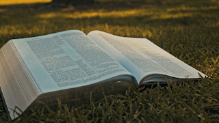 A bible is sitting open on the grass in a park thumbnail