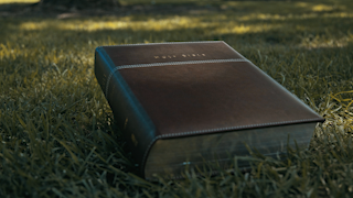 A leather bound bible is sitting on the grass in a park thumbnail