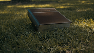 A brown bible is sitting on the grass in a park thumbnail