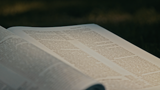 The bible is laying open on some grass thumbnail