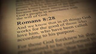 Romans 8:28 bible verse thumbnail
