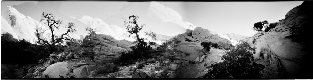0133_844red_rock_canyon-jpg