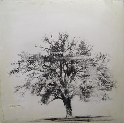 0074_lonely-tree-weather-jpg
