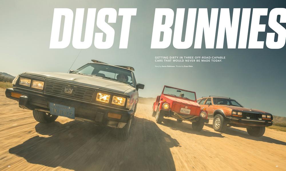 dust-bunnies-jpg