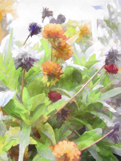 fall-flowers-jpg