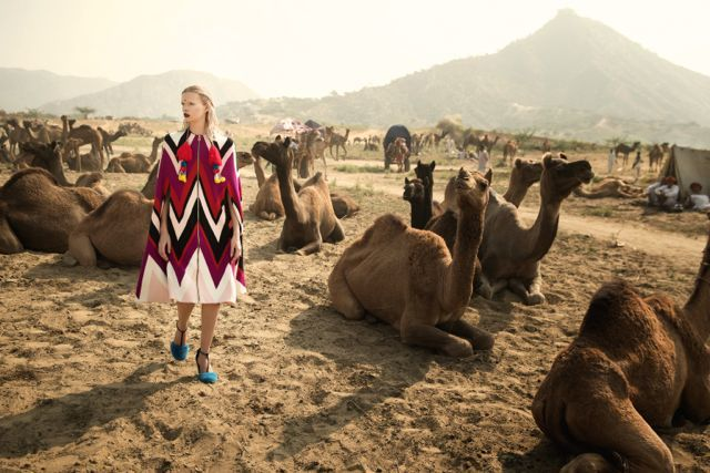 camel-3-jpg