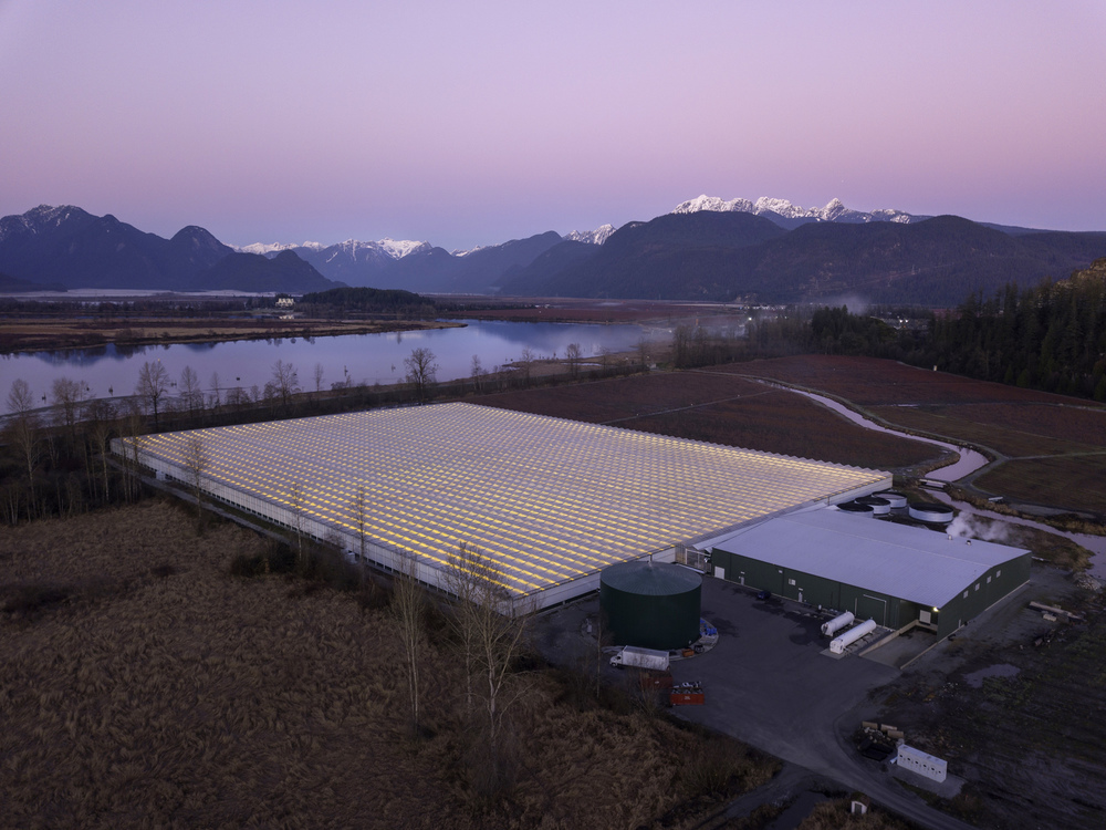 Professional BC Drone photography for Hollandia Greenhouses, this aerial photograph also included professional drone video in a fly-over of the commercial business with the aerial drone. The professional drone operator captured photo and video footage