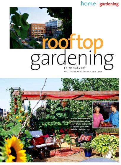 0150_20_rooftop1-jpg