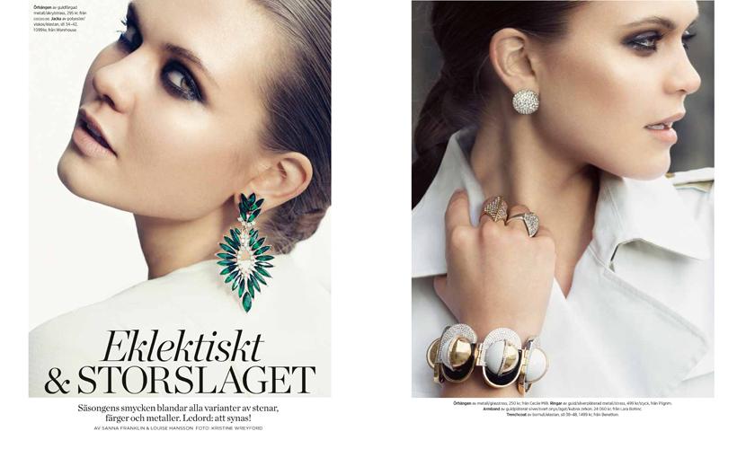 dv06-smyckestrender-1-jpg