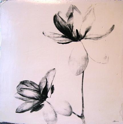 0018_double-magnolia-jpg