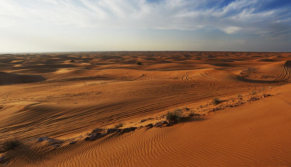 desertwideweb-jpg
