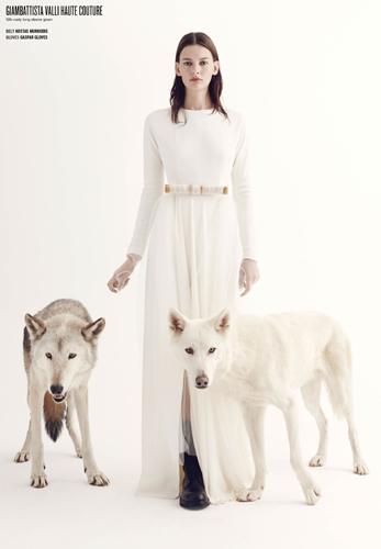 v-wolf-10-jpg