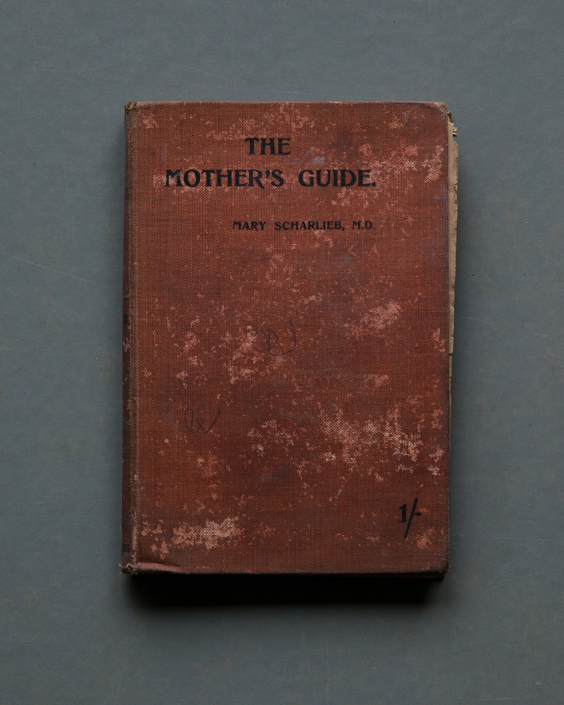 the-mother-s-guide-jpg