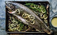 fish_006-jpg
