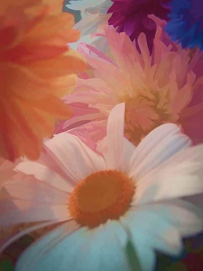 flowers-tillamook-jpg