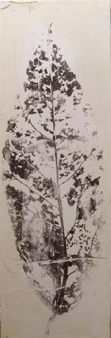0081_leaf4website-jpg