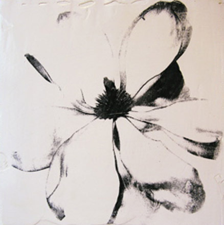 0000_magnolia440-jpg