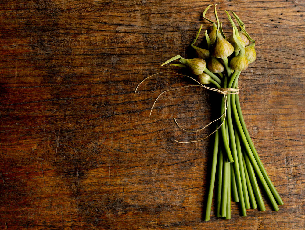 garlic-tops-2crop2-jpg