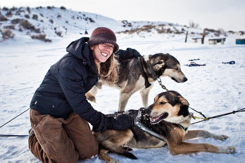 snowdogs_10-jpg