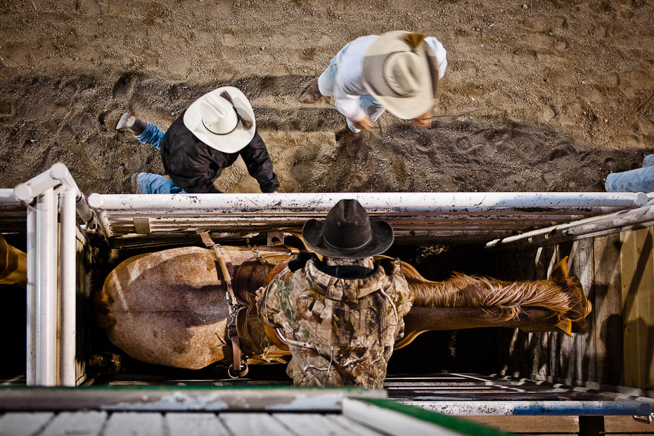 rodeo_25-jpg