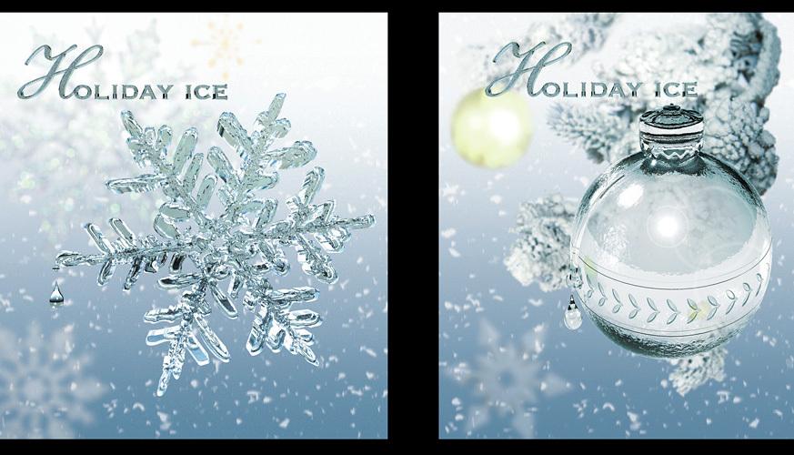 0126_eatons-snowflake-jpg