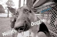 0057_650dogtraining-jpg