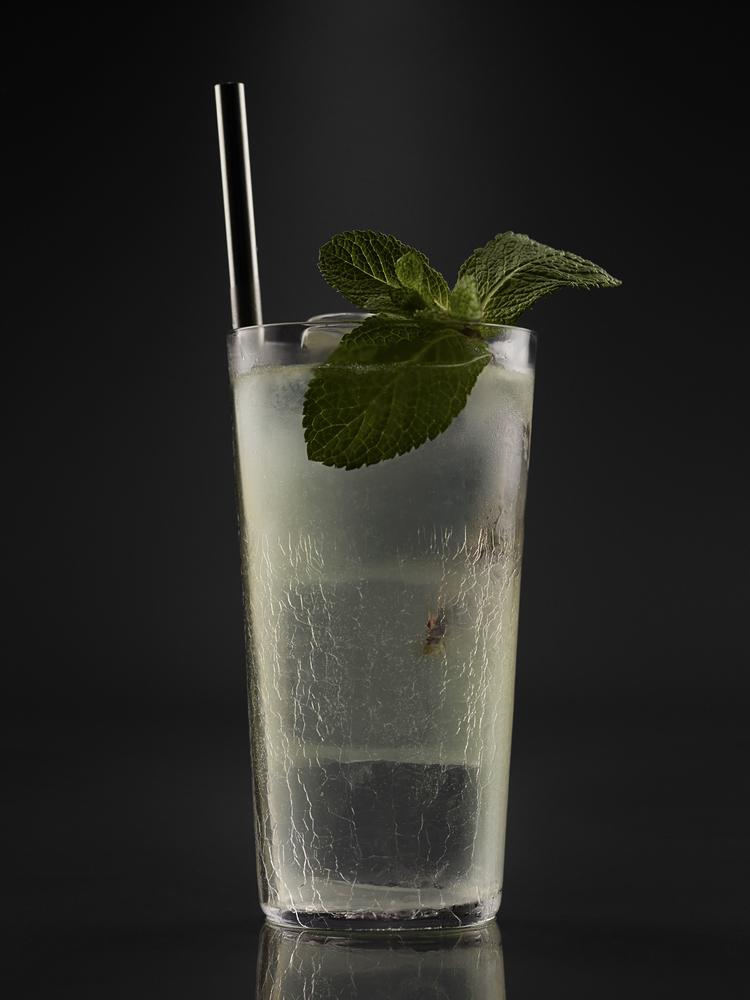 meehans-manual-cocktail125313_mojito_02mt-jpg