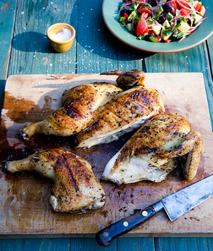 chicken_010-jpg