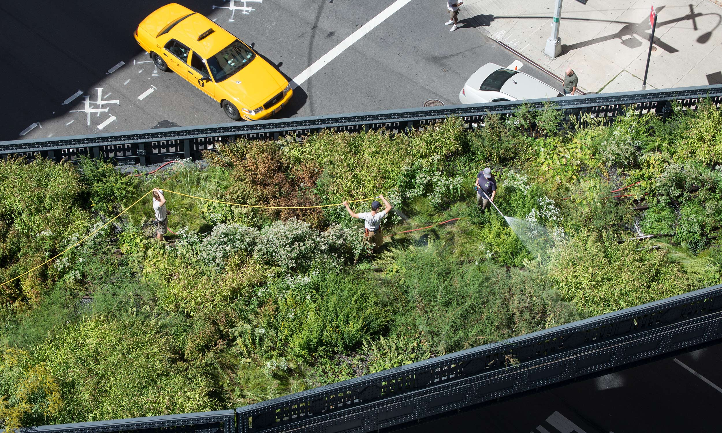 Overview | The High Line