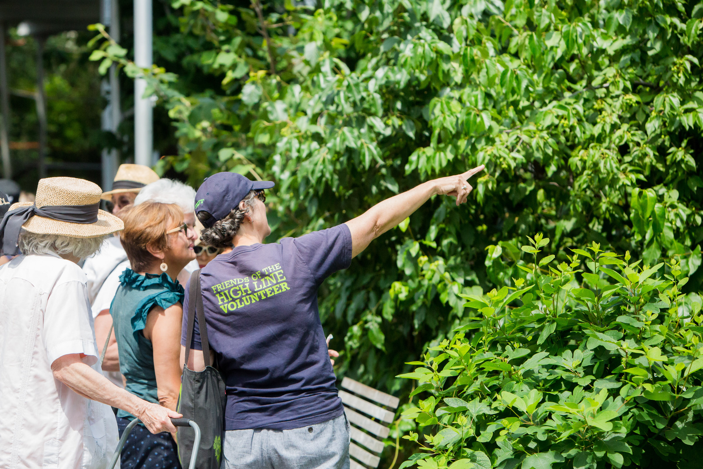 Volunteers | The High Line