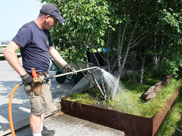 John hand watering plant bed
