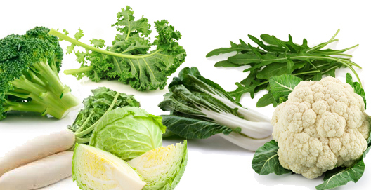 diet to increase metabolism, metabolic foods to eat, metabolic foods list