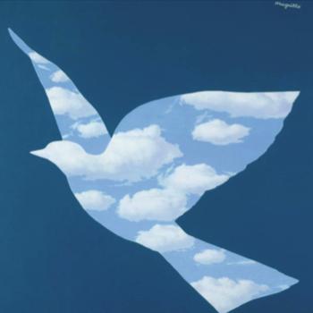 Ejyo2ur2s6u9g9fnr9fm_skybird_large