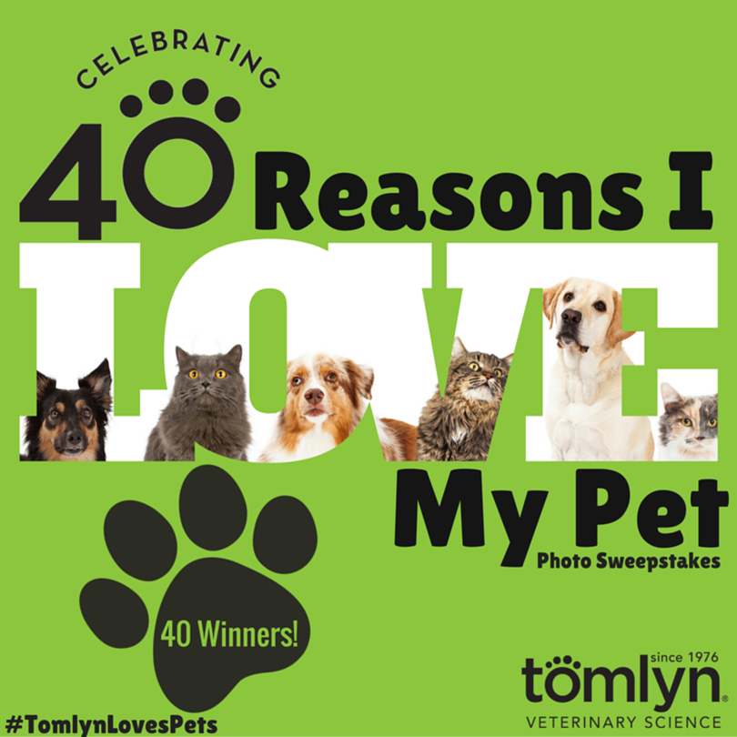 Tomlyn's 40 Reasons I Love My Pet Photo Sweeps