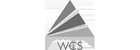 Wholesale Carrier Services