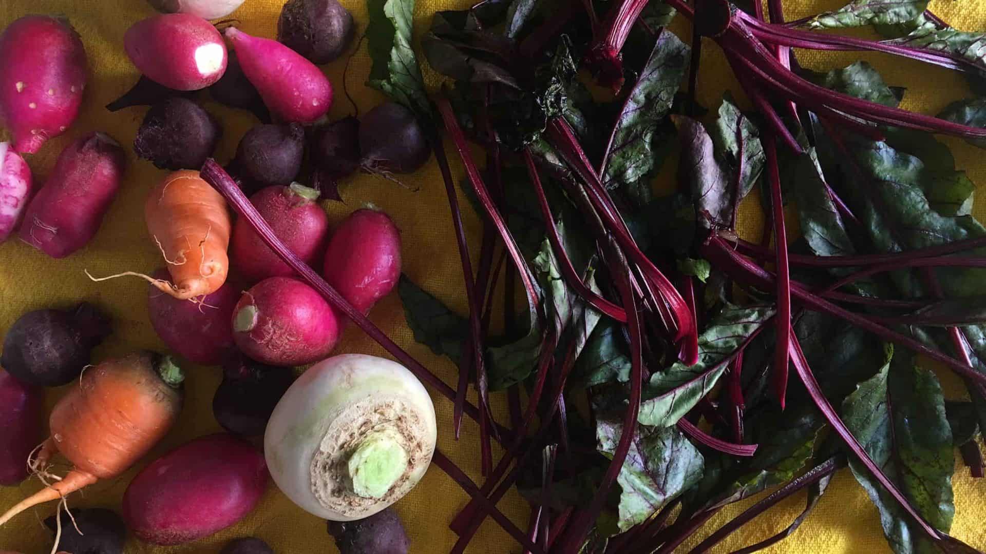 Vegetais diversos, que podem ser melhor aproveitados, como mostra o Guia Prático YAM contra o desperdício de alimentos