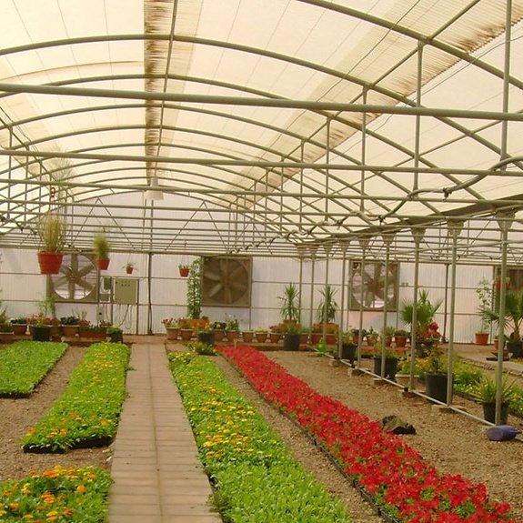 خصائص الزراعة في البيوت المحمية Posts By Hamza Bloglovin