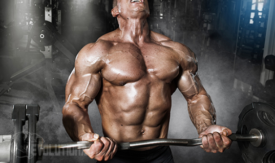 Sarms For Sale - Where To Buy Sarms Online Posts by MichaelSmith Bloglovin'