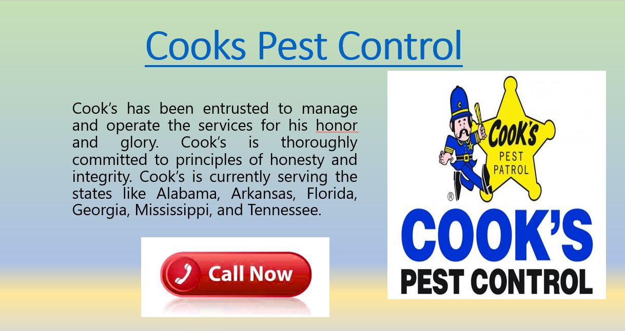 Cooks Pest control removes all pests and bugs from your place