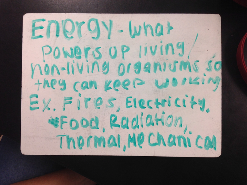 Ninth grade Lesson Introduction to Energy: Types