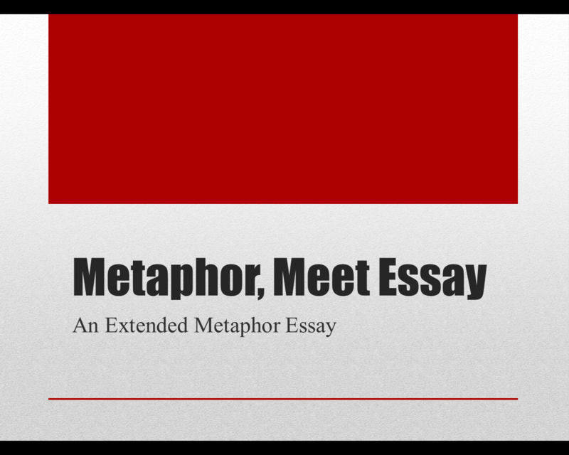 Computer Science Essays  Example Of Essay Writing In English also The Yellow Wallpaper Analysis Essay Eleventh Grade Lesson Extended Metaphor Essay Day One Argumentative Essay Examples High School