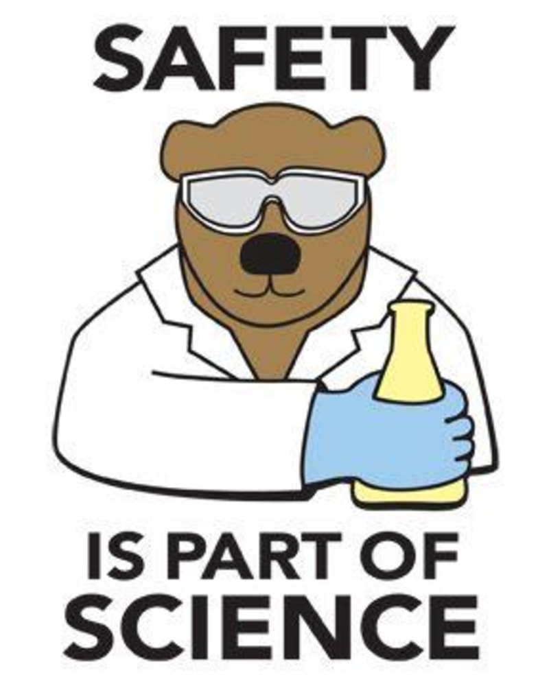 sixth grade lesson science safety public service announcement
