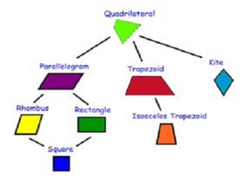 Tenth Grade Lesson Developing The Family Tree Of Quadrilaterals