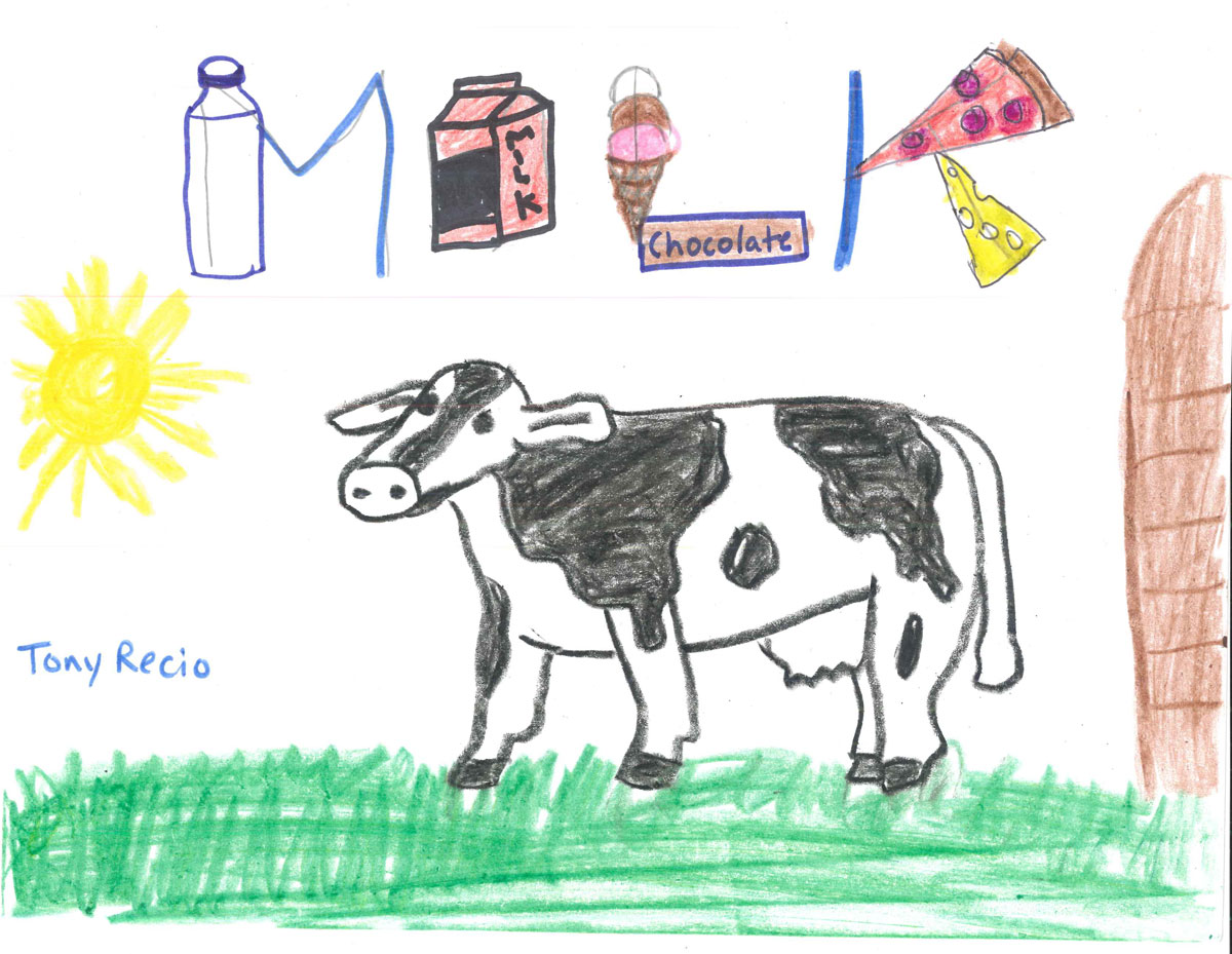 i like cows composition contest