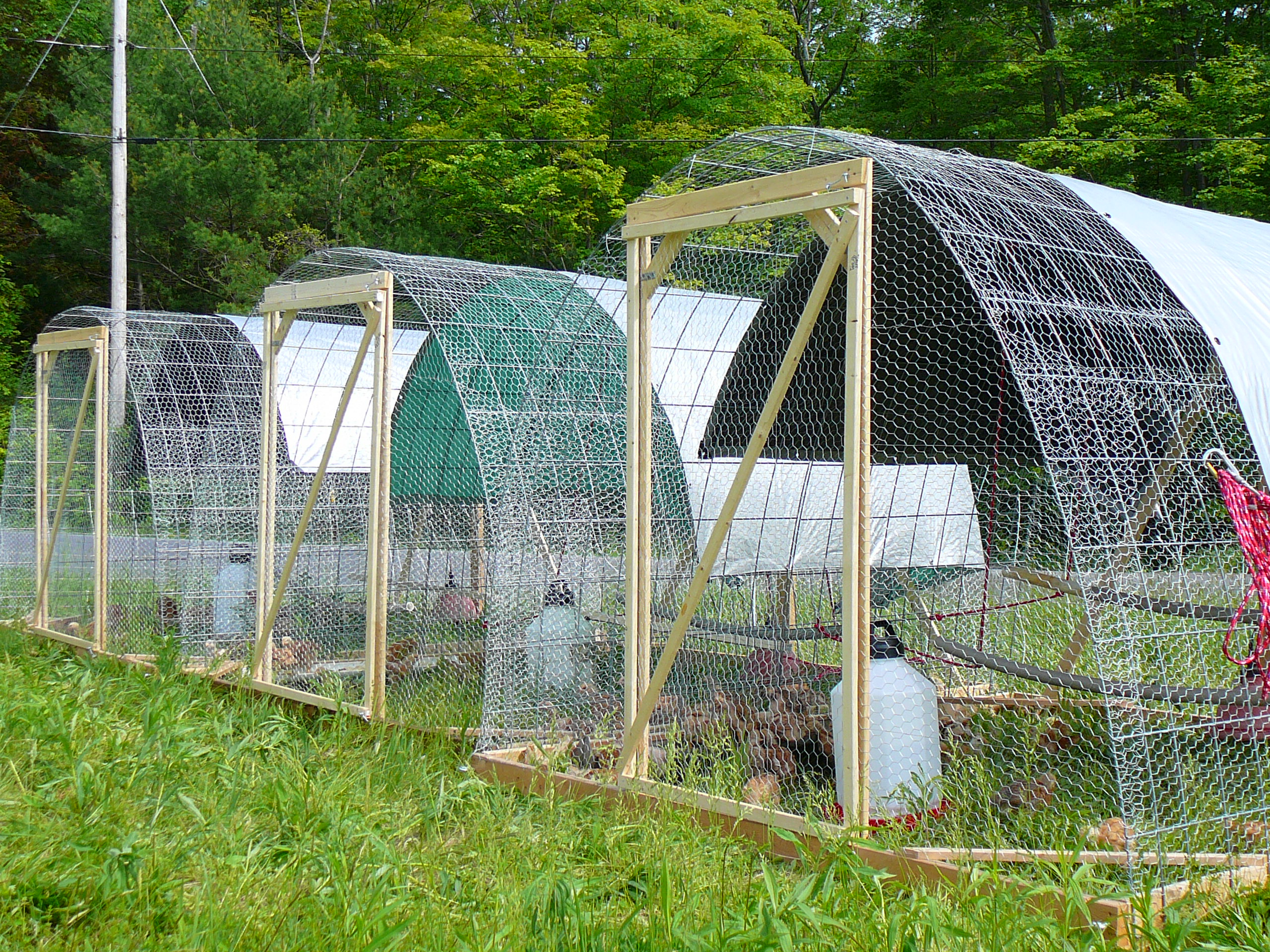 Farm Profit: Making A Life And A Living From Your Farm